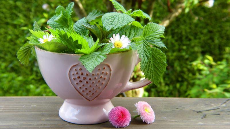 Teekanne-Herz_klein.jpg